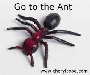 go-to-the-ant