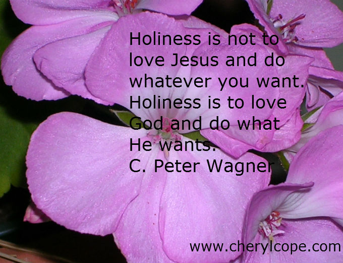 holiness quote by c peter wagner