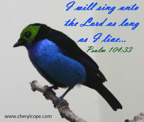 I-will-sing-unto-the-Lord-